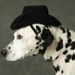 Black K-9 Kowboy Hat